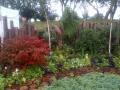 IMG-20120815-00076